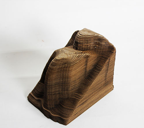 Wooden model of elevation changes