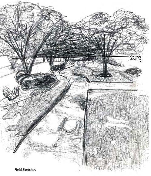 lsu landscape design I