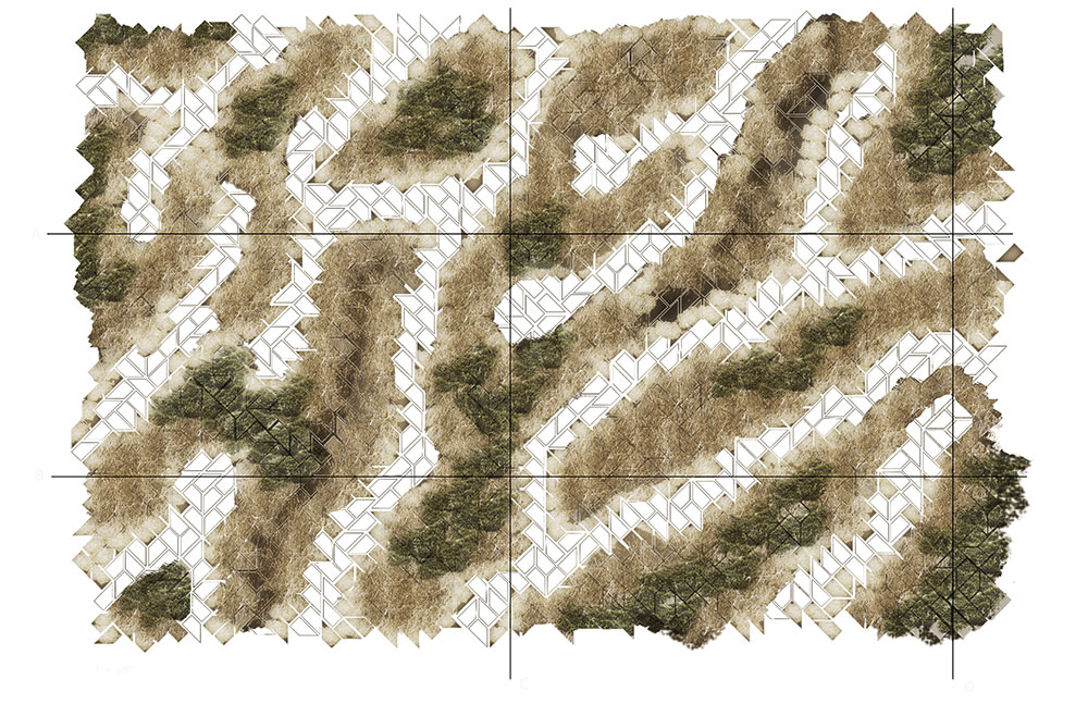 LSU landscape architecture planting pattern diagram