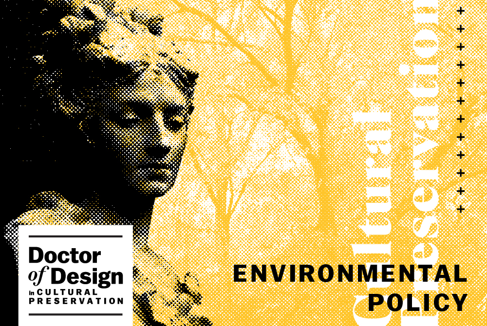 lsu doctor of design environmental policy graphic