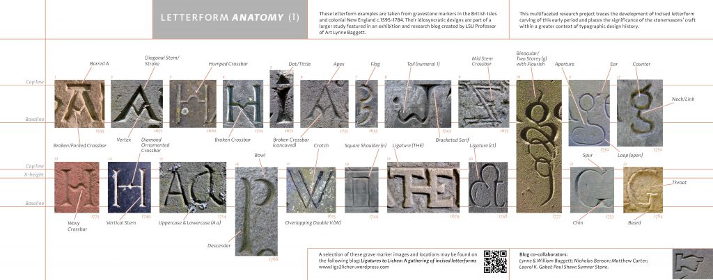 Letterform Anatomy Poster