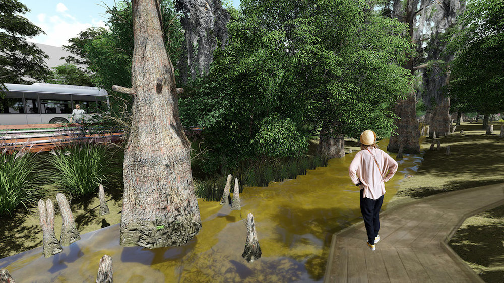 """Algiers Eco-Loop"" swamp walk perspective, by Phillip Fernberg."