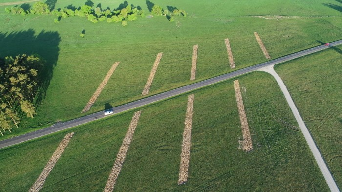 Overhead view of green field with lines cut in it