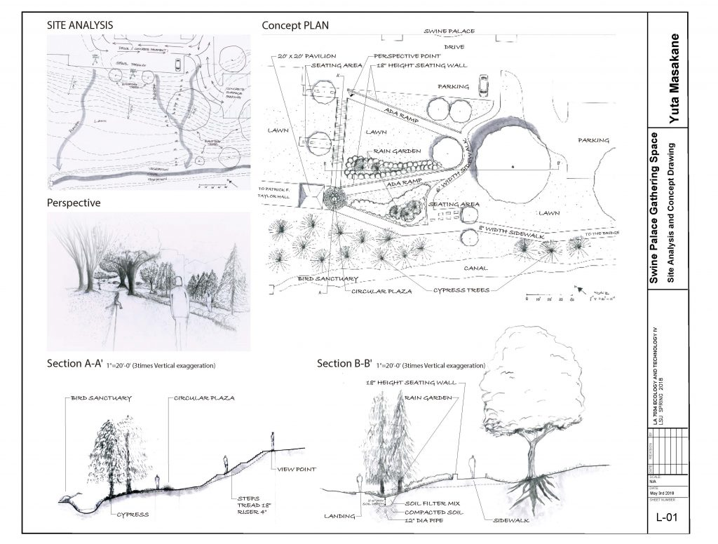 Swine palace gathering space concept plan
