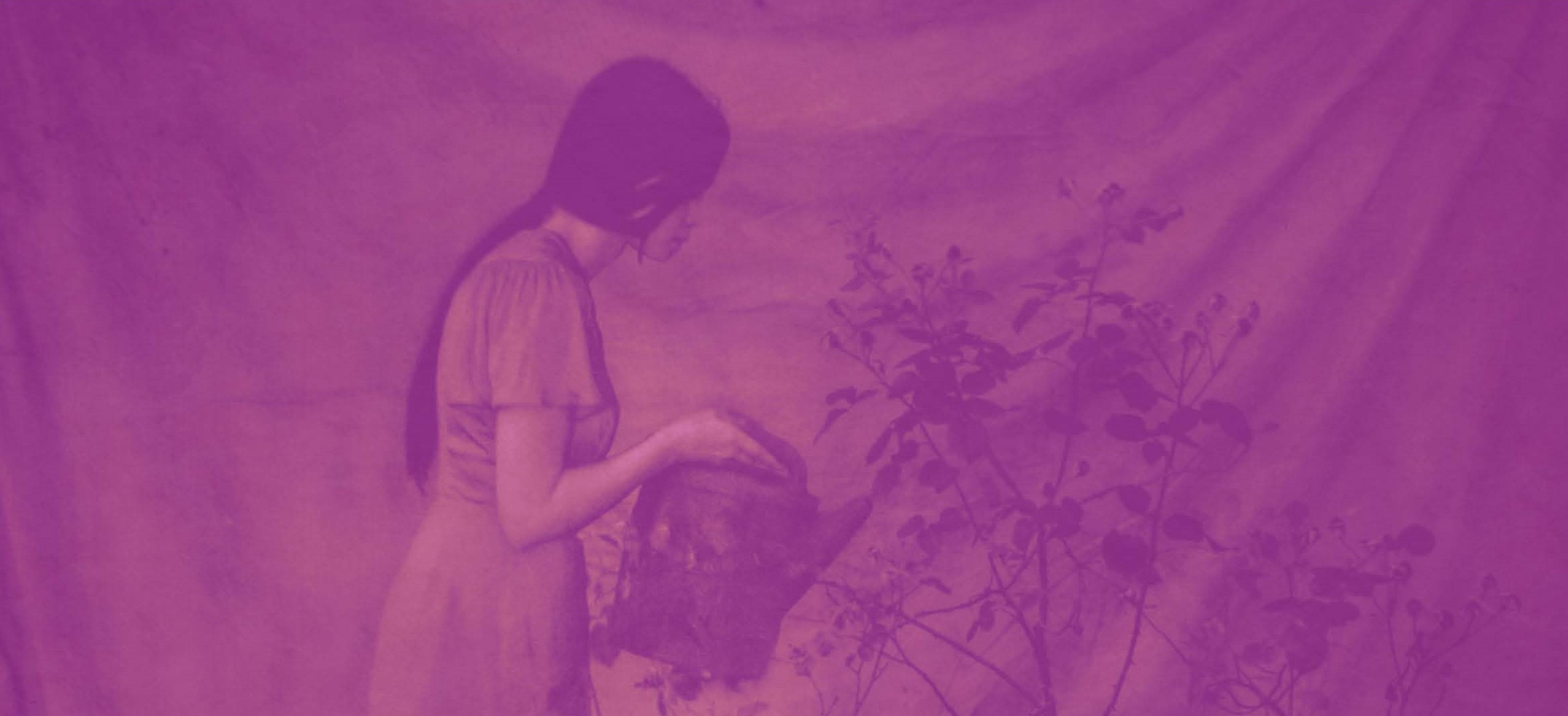 Purple image of girl watering plants