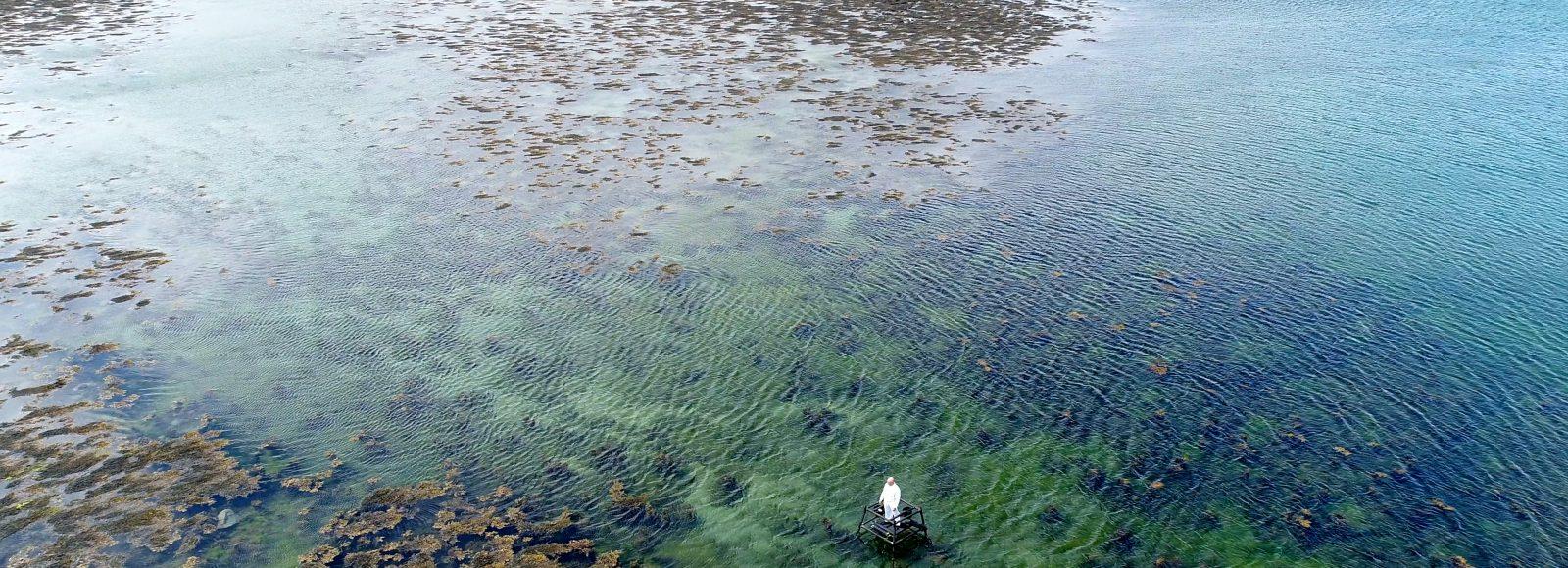 Swimming to Inishkeel