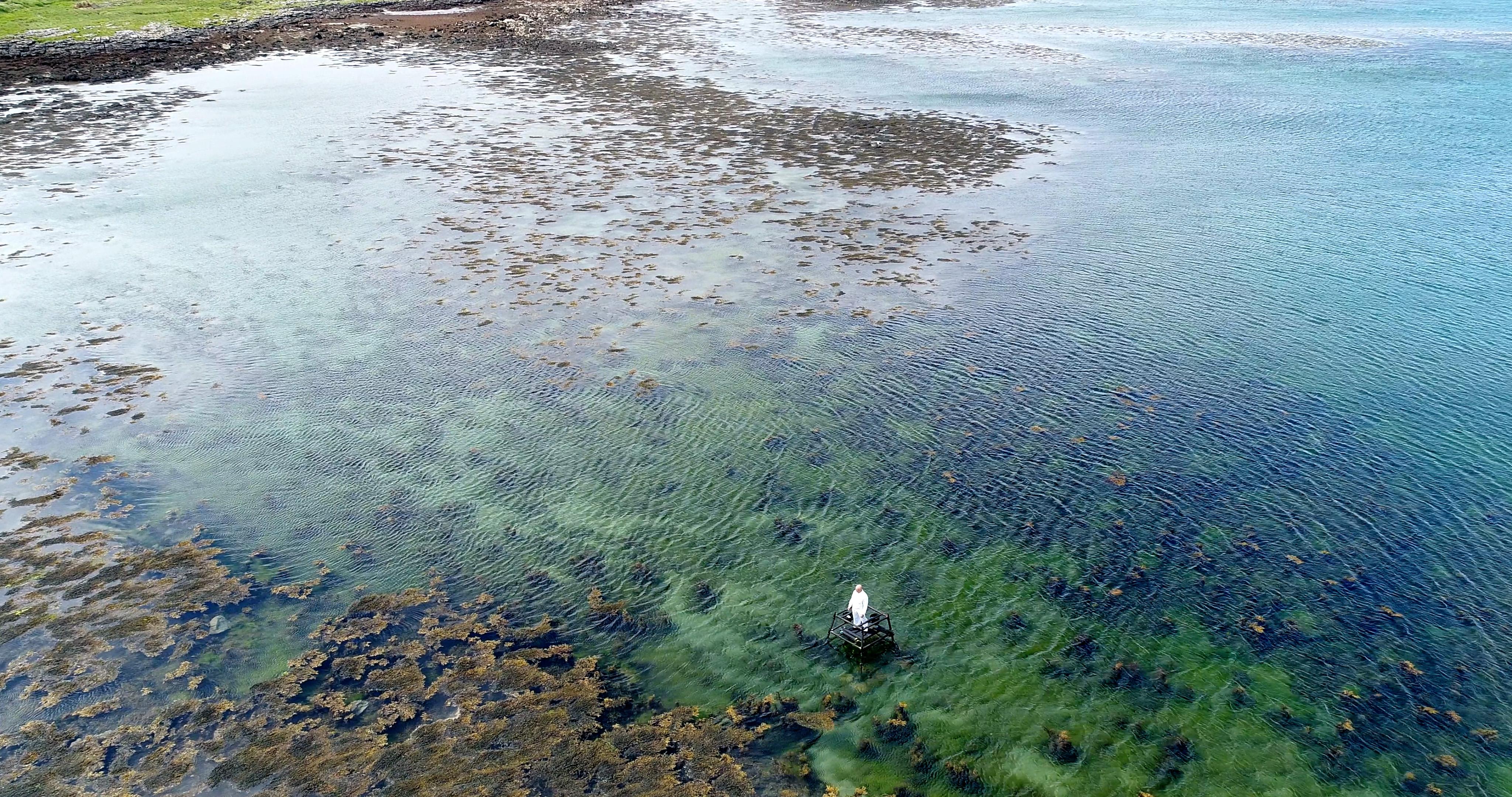 White figure in blue green sea
