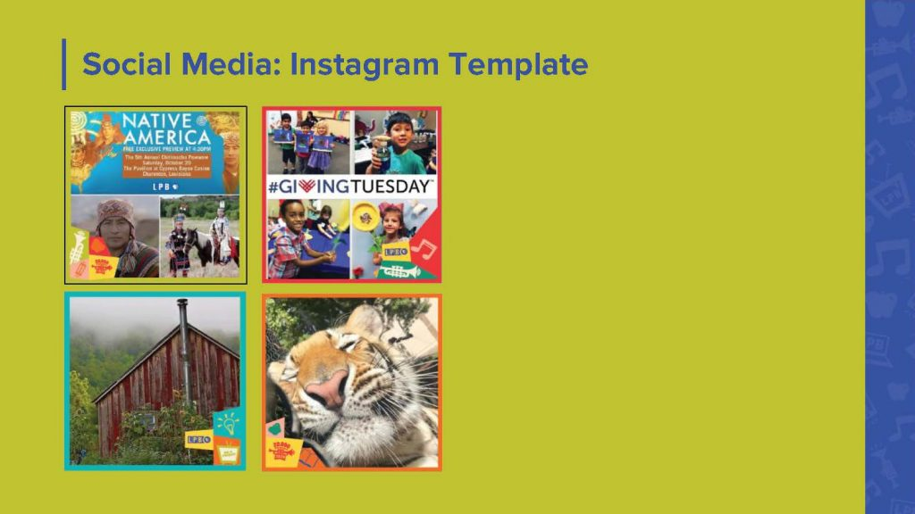 social media template graphic designs for LPB