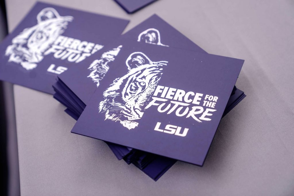 Fierce for the Future cards