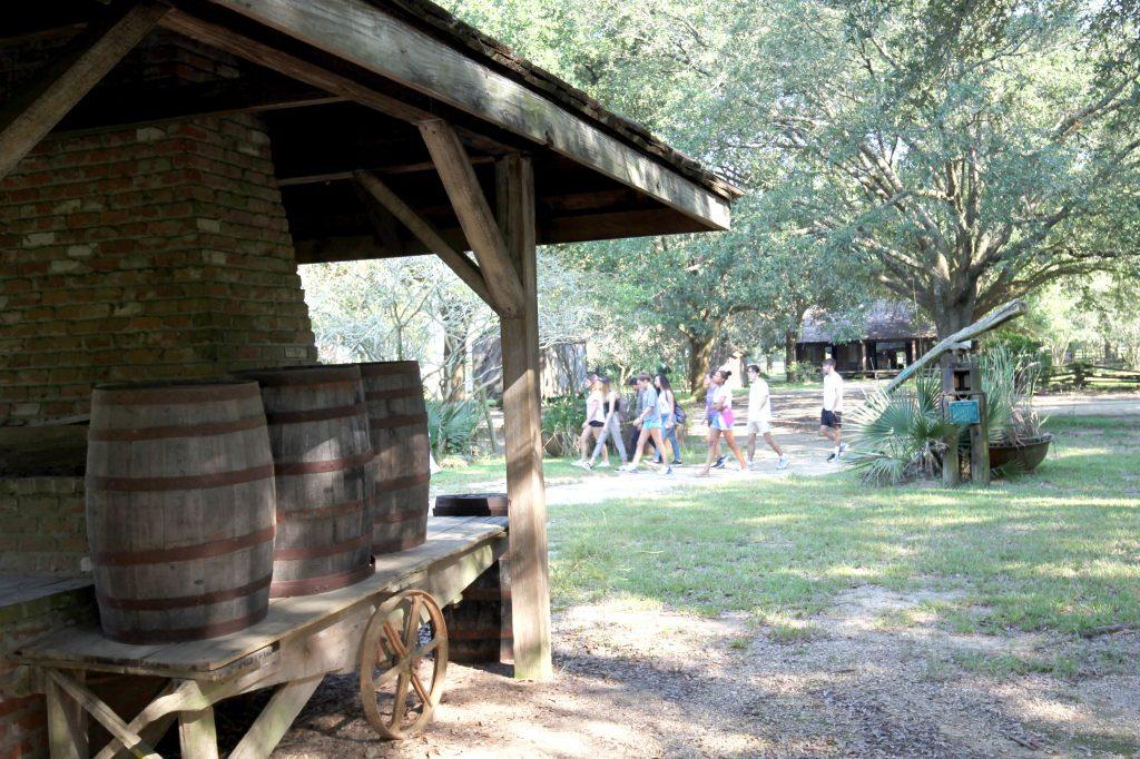 Groups of students walking around Rural Life Museum