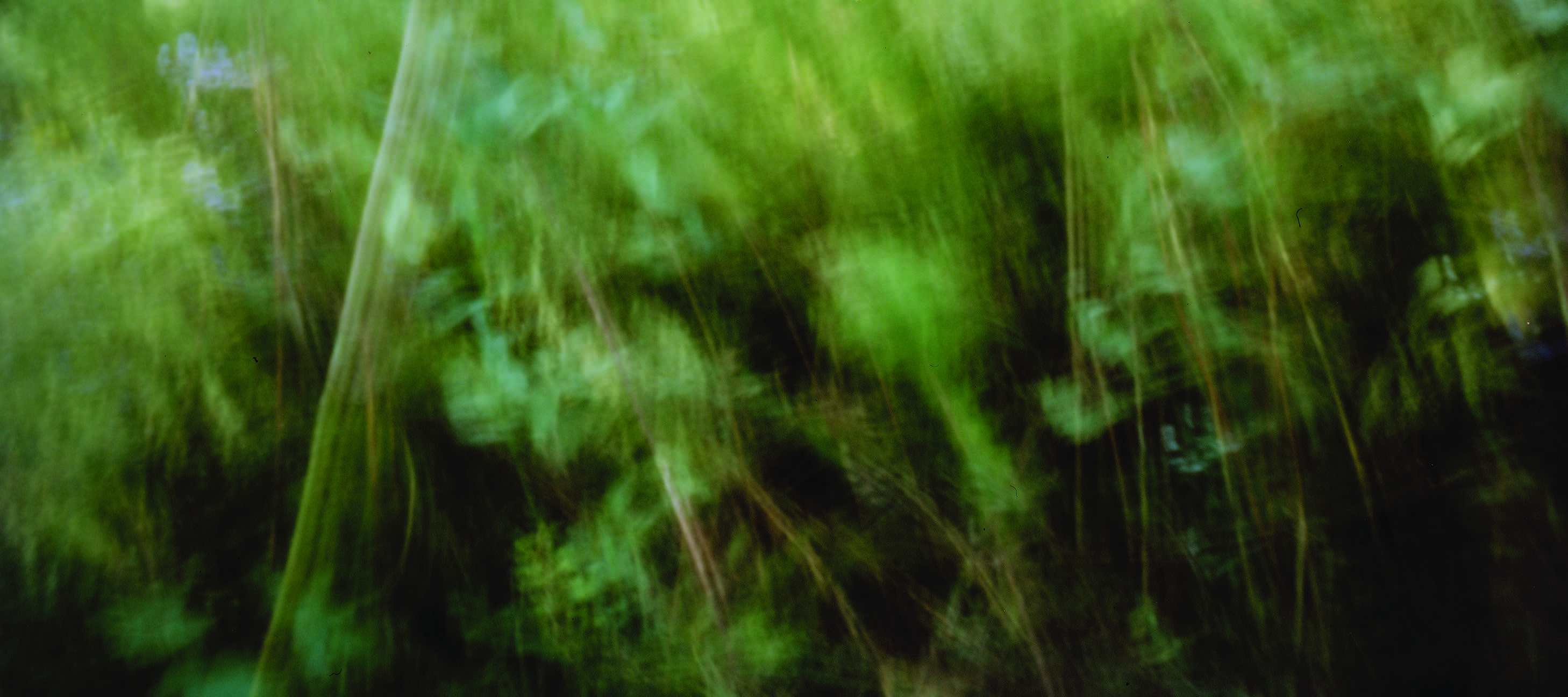 Abstract art with hazy green light